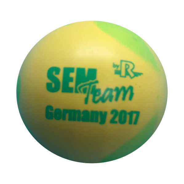 SEM Team Germany 2017